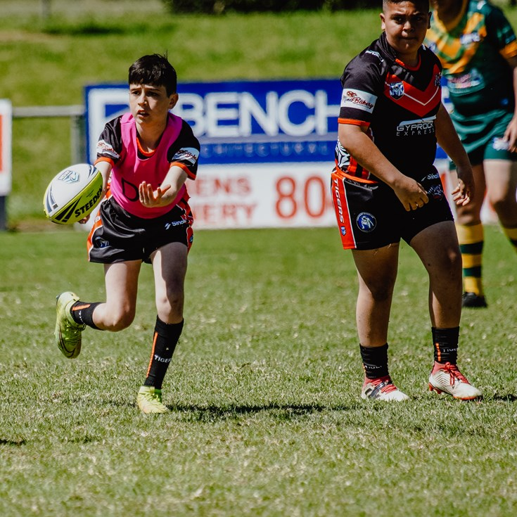 Canterbury-Bankstown Juniors Update
